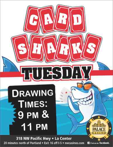 Card Sharks Tuesday